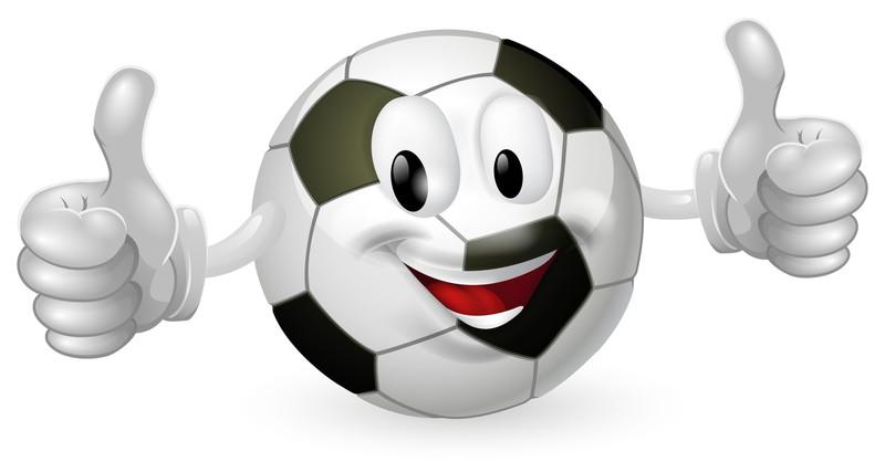 サッカーボール観戦